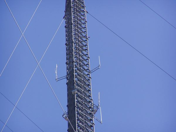 W4RAT repeater antennas